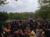 26 april 2014 - Koningsdag - Publiek live muziek